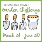 Garden Challenge-hosted by the Home School Village