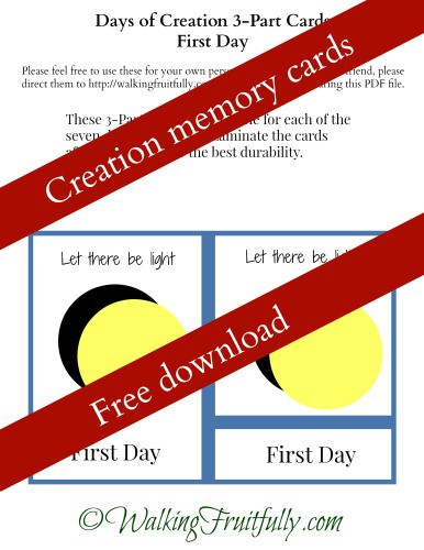 Download Creation Memory Cards