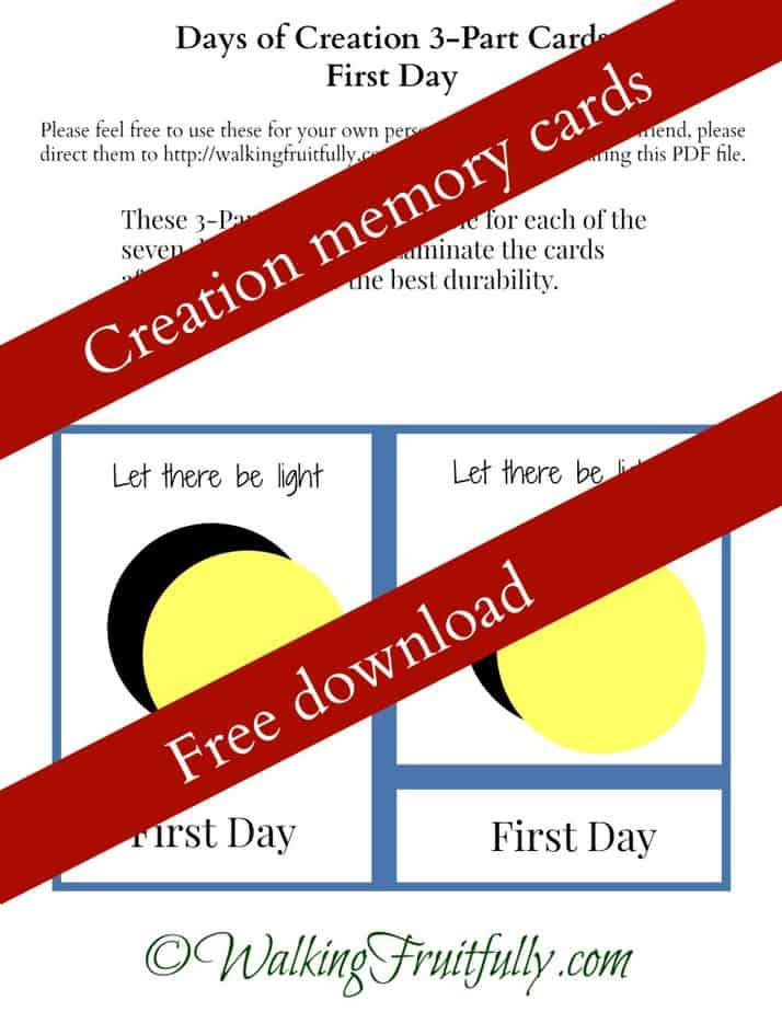 Creationism essay