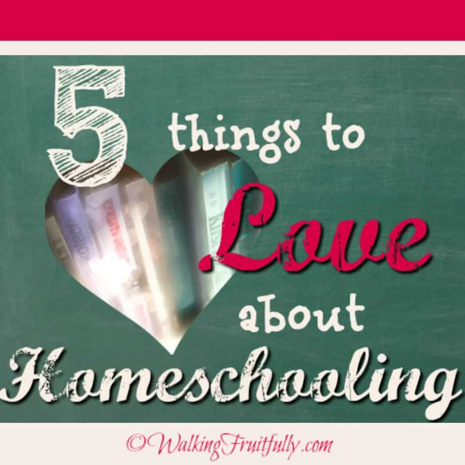 5 things to love about homeschooling