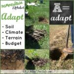 Adapt the problem to the solution ~ Permaculture Alphabet