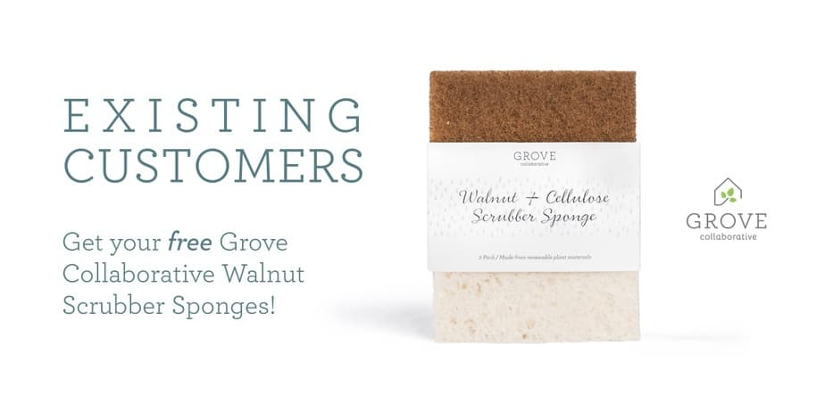 Walnut Scrubber Sponges
