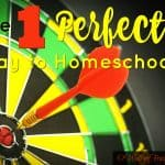 The One Perfect Way to Homeschool