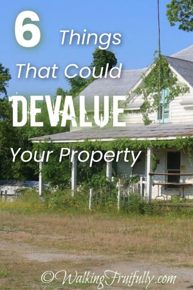6 Things That Could Devalue Your House - Poor Roofing, Lack of Curb Appeal, Invasive Plants